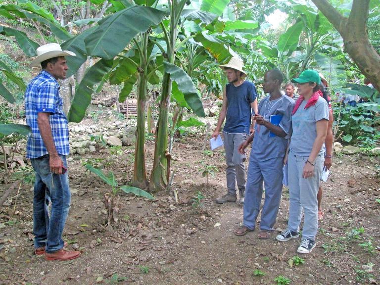 En la finca La Juanica, de Rafael Medina González, los delegados apreciaron experiencias en la obtención de alimento animal y la efectividad del Biolac