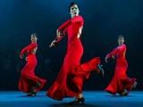 Irene Rodríguez prepara gran estreno para festival de danza en EE.UU.