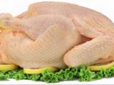 Alertan sobre el consumo excesivo de carne de pollo