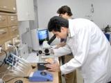 Cuba celebra Día Nacional de la Ciencia