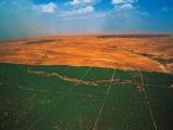 Una Gran Muralla Verde en África para combatir el cambio climático