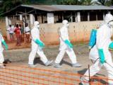 Insta OMS a comunidad internacional a apoyar combate del ébola